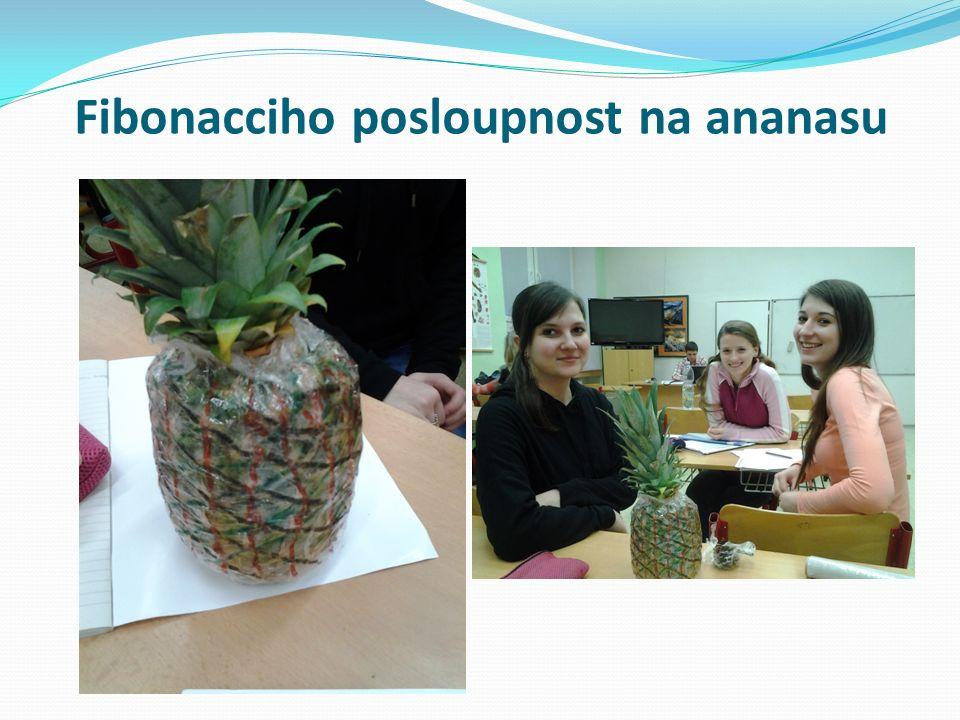 Fibonacciho posloupnost na ananasu