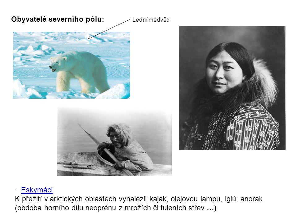 Obyvatelé severního pólu: · EskymáciEskymáci K přežití v arktických oblastech vynalezli kajak, olejovou lampu, iglú, anorak (obdoba horního dílu neoprénu z mrožích či tuleních střev …) Lední medvěd