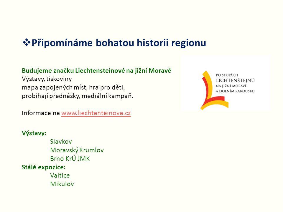  Připomínáme bohatou historii regionu Budujeme značku Liechtensteinové na jižní Moravě Výstavy, tiskoviny mapa zapojených míst, hra pro děti, probíhají přednášky, mediální kampaň.