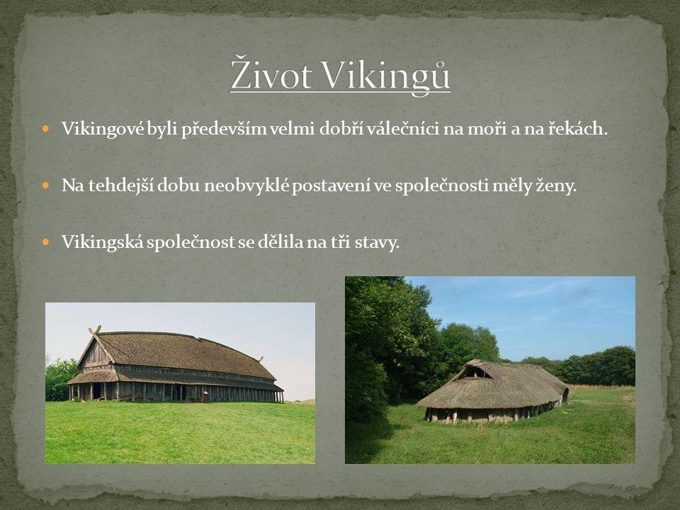 Vikingové byli především velmi dobří válečníci na moři a na řekách. Na tehdejší dobu neobvyklé postavení ve společnosti měly ženy. Vikingská společnos