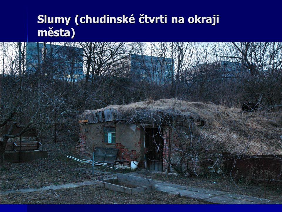 Slumy (chudinské čtvrti na okraji města)