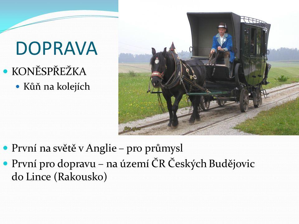 Parní stroj http://www.parnistroj.czweb.org/schema.htmlhttp://www.parnistroj.czweb.org/schema.html Paroloď Parní lokomotiva Další možnosti na referáty