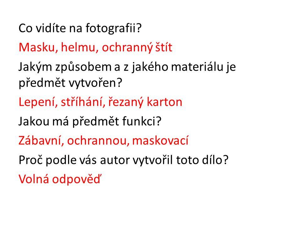 Co vidíte na fotografii.