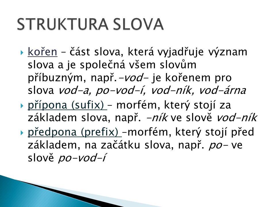  kořen – část slova, která vyjadřuje význam slova a je společná všem slovům příbuzným, např.-vod- je kořenem pro slova vod-a, po-vod-í, vod-ník, vod-árna  přípona (sufix) – morfém, který stojí za základem slova, např.