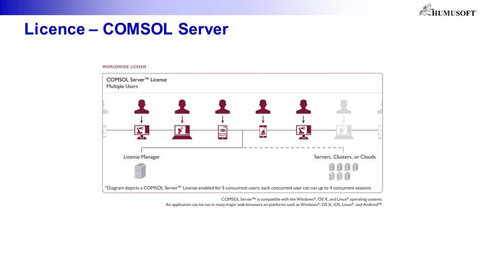 Licence – COMSOL Server