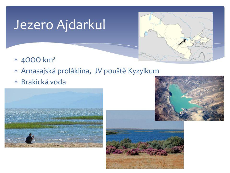  4OOO km 2  Arnasajská proláklina, JV pouště Kyzylkum  Brakická voda Jezero Ajdarkul