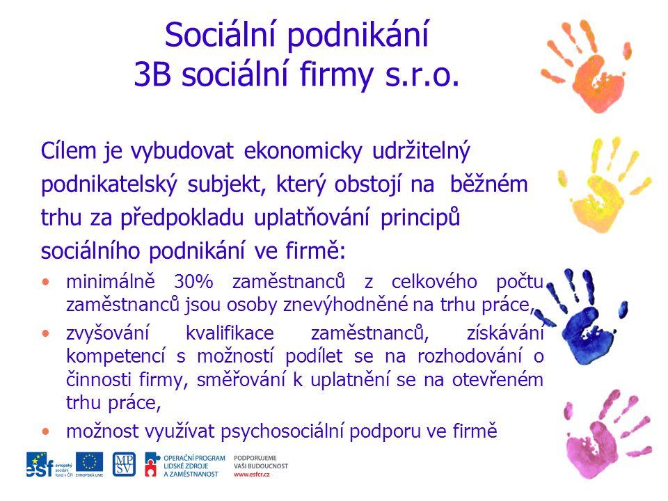 Sociální podnikání 3B sociální firmy s.r.o.