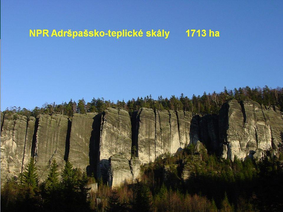 NPR Adršpašsko-teplické skály 1713 ha