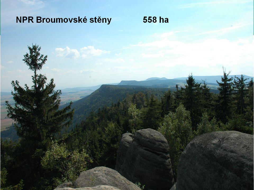 NPR Broumovské stěny 558 ha