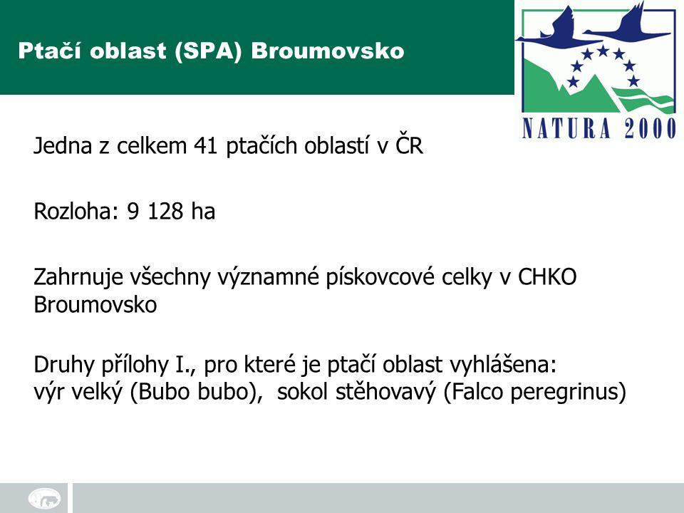Jedna z celkem 41 ptačích oblastí v ČR Rozloha: 9 128 ha Zahrnuje všechny významné pískovcové celky v CHKO Broumovsko Druhy přílohy I., pro které je ptačí oblast vyhlášena: výr velký (Bubo bubo), sokol stěhovavý (Falco peregrinus) Ptačí oblast (SPA) Broumovsko
