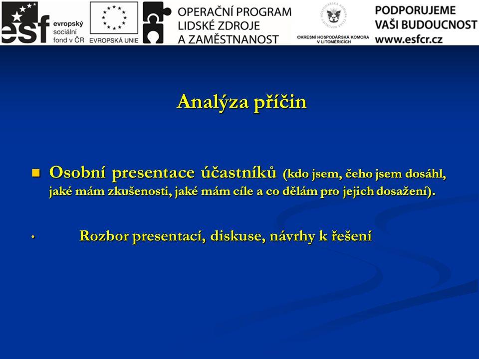Analýza příčin Osobní presentace účastníků (kdo jsem, čeho jsem dosáhl, jaké mám zkušenosti, jaké mám cíle a co dělám pro jejich dosažení).