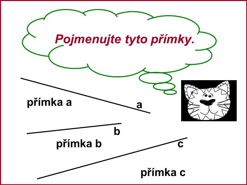 Pojmenujte tyto přímky. a b c přímka a přímka b přímka c