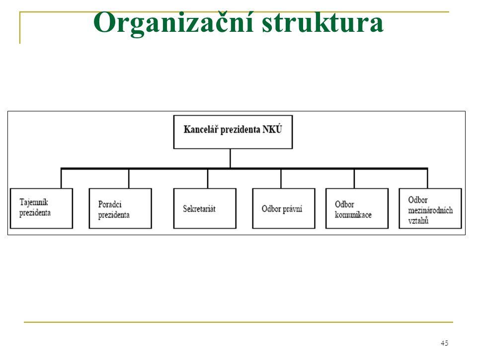 45 Organizační struktura