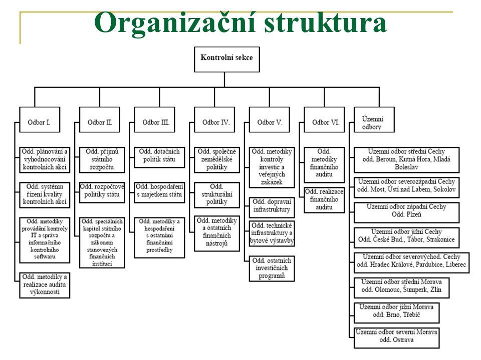 46 Organizační struktura