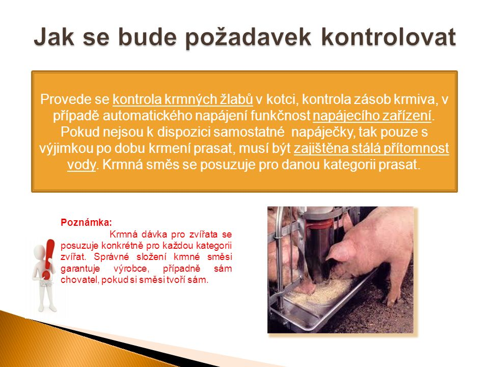 Provede se kontrola krmných žlabů v kotci, kontrola zásob krmiva, v případě automatického napájení funkčnost napájecího zařízení. Pokud nejsou k dispo