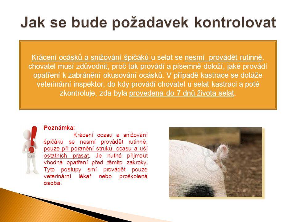 Krácení ocásků a snižování špičáků u selat se nesmí provádět rutinně, chovatel musí zdůvodnit, proč tak provádí a písemně doloží, jaké provádí opatřen