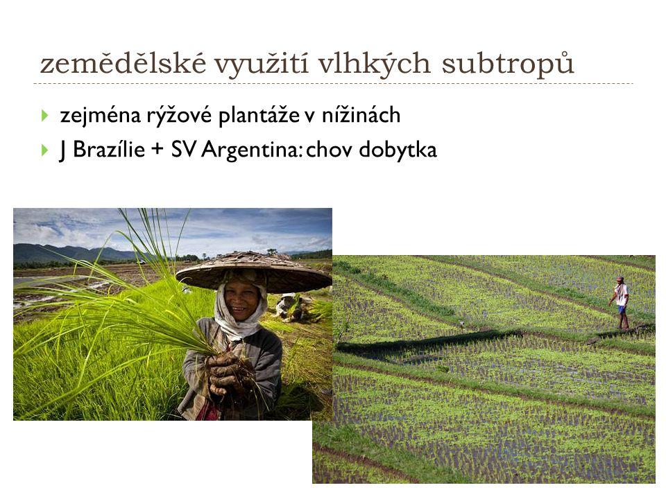 zemědělské využití vlhkých subtropů  zejména rýžové plantáže v nížinách  J Brazílie + SV Argentina: chov dobytka