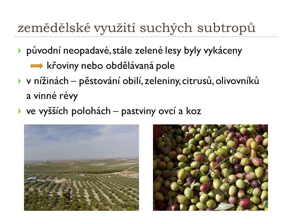 zemědělské využití suchých subtropů  původní neopadavé, stále zelené lesy byly vykáceny křoviny nebo obdělávaná pole  v nížinách – pěstování obilí, zeleniny, citrusů, olivovníků a vinné révy  ve vyšších polohách – pastviny ovcí a koz