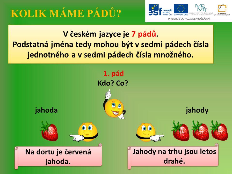 V českém jazyce je 7 pádů.