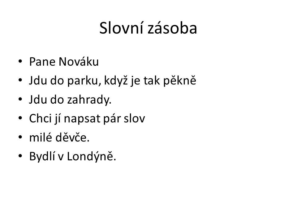 Slovní zásoba Pane Nováku Jdu do parku, když je tak pěkně Jdu do zahrady.