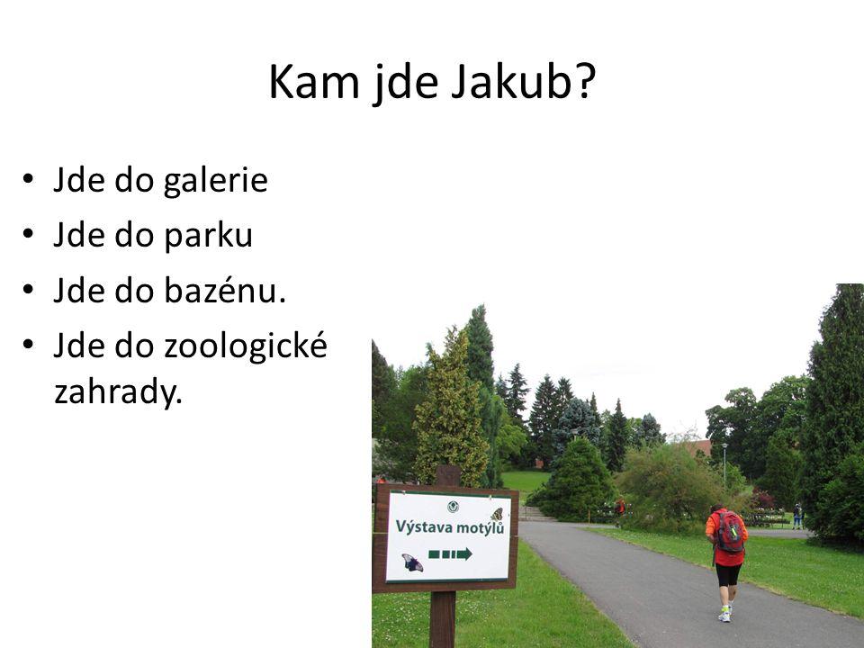 Kam jde Jakub Jde do galerie Jde do parku Jde do bazénu. Jde do zoologické zahrady.