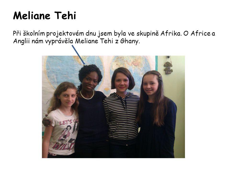 Meliane Tehi Při školním projektovém dnu jsem byla ve skupině Afrika.