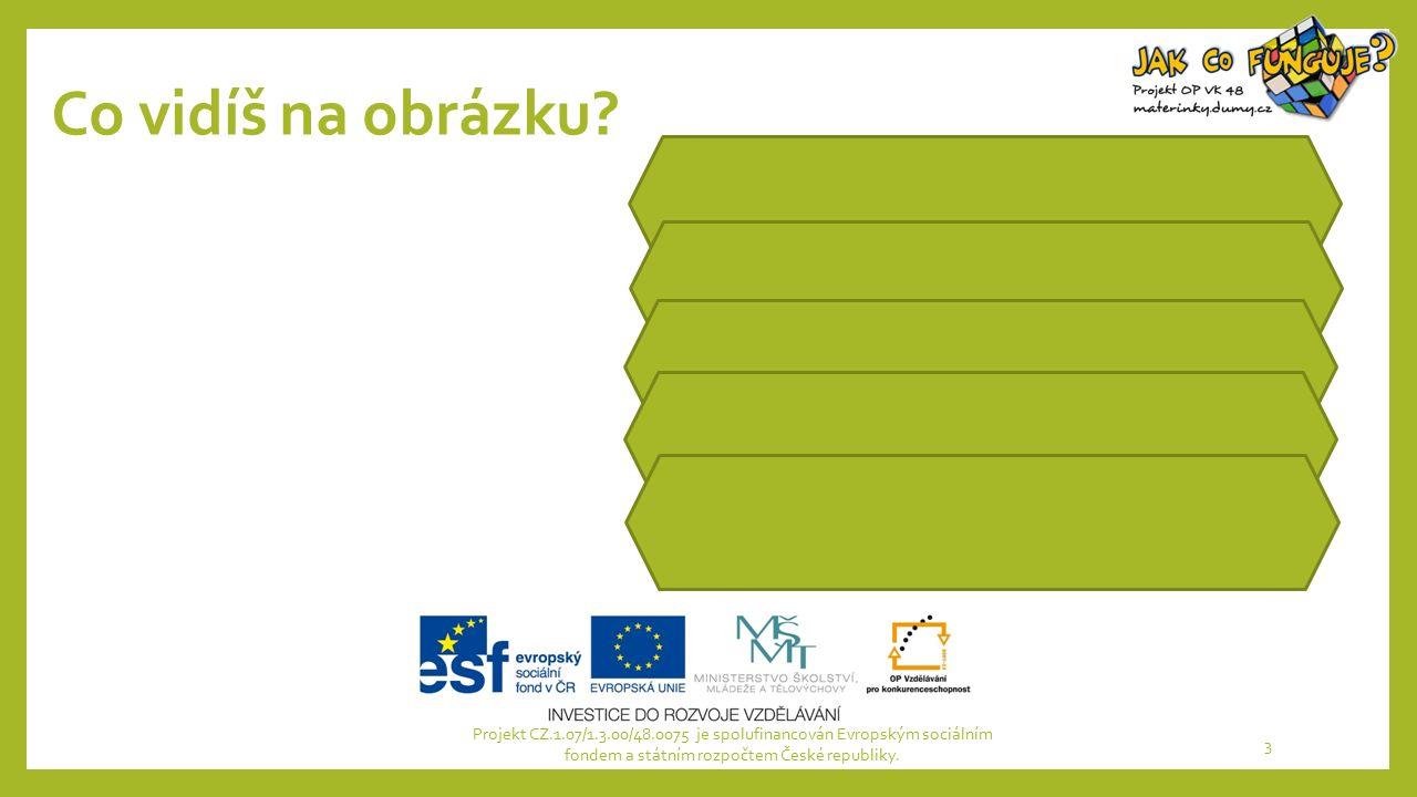 Co vidíš na obrázku? Projekt CZ.1.07/1.3.00/48.0075 je spolufinancován Evropským sociálním fondem a státním rozpočtem České republiky. 3