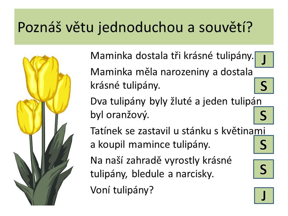 Poznáš větu jednoduchou a souvětí.Maminka dostala tři krásné tulipány.