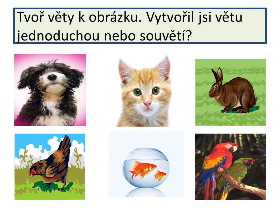 Tvoř věty k obrázku. Vytvořil jsi větu jednoduchou nebo souvětí?
