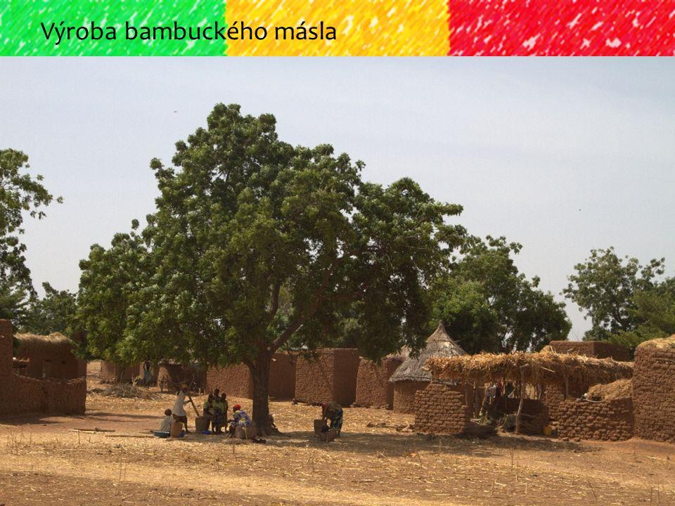 Výroba bambuckého másla