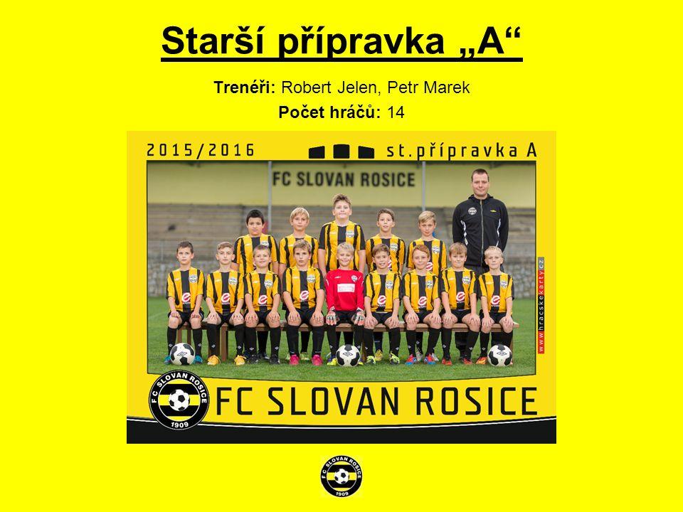 Mladší žáci Trenéři: Petr Vyhnalík, Robert Hakel Počet hráčů: 17