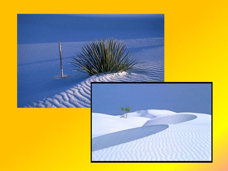 Sossusvlei - Namibie světoznámá poušť Sossusvlei, patří mezi nejkrásnější pouště můžete zde spatřit unikátní písečné duny.