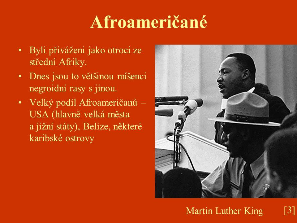 Afroameričané Byli přiváženi jako otroci ze střední Afriky. Dnes jsou to většinou míšenci negroidní rasy s jinou. Velký podíl Afroameričanů – USA (hla