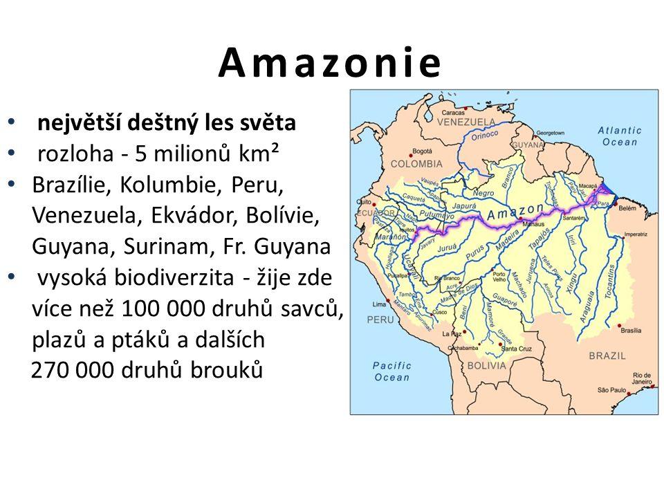 Amazonie největší deštný les světa rozloha - 5 milionů km² Brazílie, Kolumbie, Peru, Venezuela, Ekvádor, Bolívie, Guyana, Surinam, Fr.