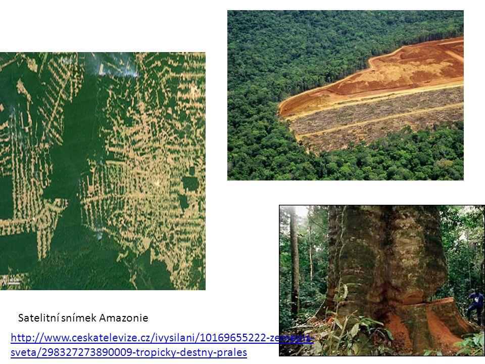 Satelitní snímek Amazonie http://www.ceskatelevize.cz/ivysilani/10169655222-zemepis- sveta/298327273890009-tropicky-destny-prales