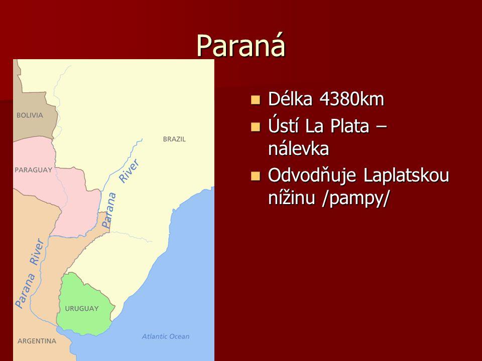 Paraná Délka 4380km Délka 4380km Ústí La Plata – nálevka Ústí La Plata – nálevka Odvodňuje Laplatskou nížinu /pampy/ Odvodňuje Laplatskou nížinu /pampy/
