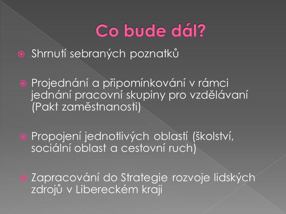  Shrnutí sebraných poznatků  Projednání a připomínkování v rámci jednání pracovní skupiny pro vzdělávaní (Pakt zaměstnanosti)  Propojení jednotlivých oblastí (školství, sociální oblast a cestovní ruch)  Zapracování do Strategie rozvoje lidských zdrojů v Libereckém kraji