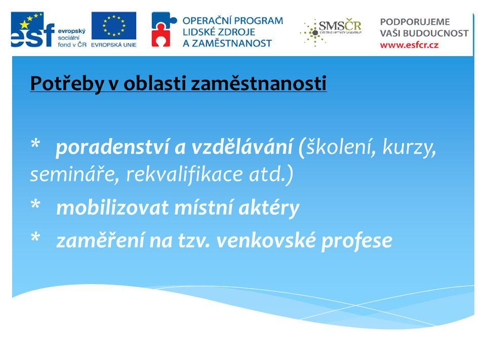 Potřeby v oblasti zaměstnanosti * poradenství a vzdělávání (školení, kurzy, semináře, rekvalifikace atd.) * mobilizovat místní aktéry * zaměření na tzv.