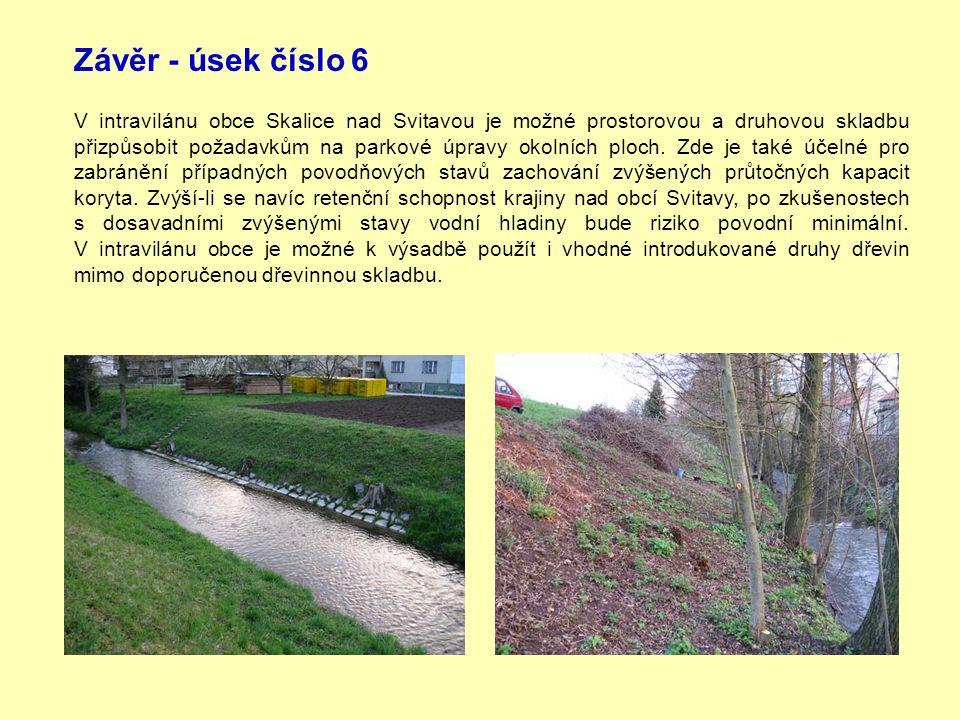 Závěr - úsek číslo 6 V intravilánu obce Skalice nad Svitavou je možné prostorovou a druhovou skladbu přizpůsobit požadavkům na parkové úpravy okolních ploch.