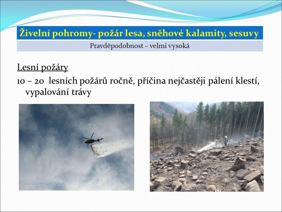 Lesní požáry 10 – 20 lesních požárů ročně, příčina nejčastěji pálení klestí, vypalování trávy Živelní pohromy- požár lesa, sněhové kalamity, sesuvy Pravděpodobnost – velmi vysoká