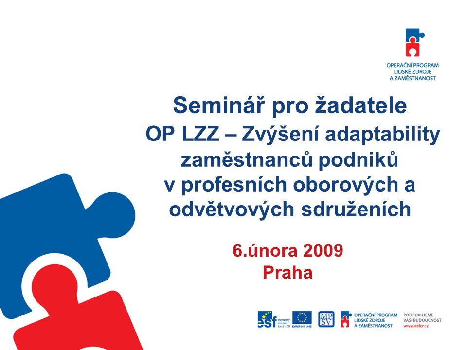 Seminář pro žadatele OP LZZ – Zvýšení adaptability zaměstnanců podniků v profesních oborových a odvětvových sdruženích 6.února 2009 Praha