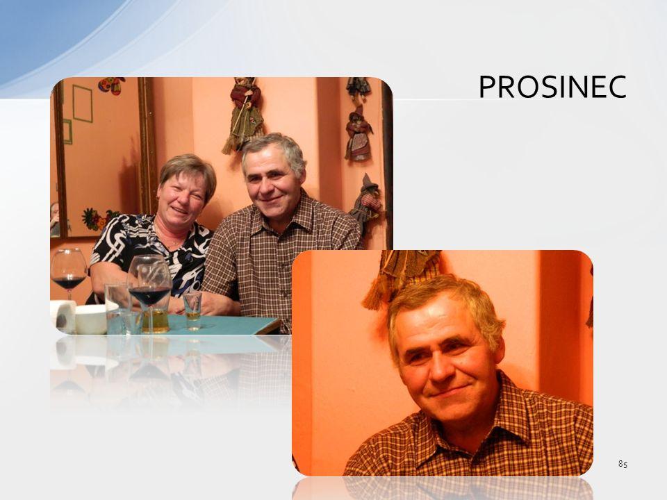 PROSINEC 85