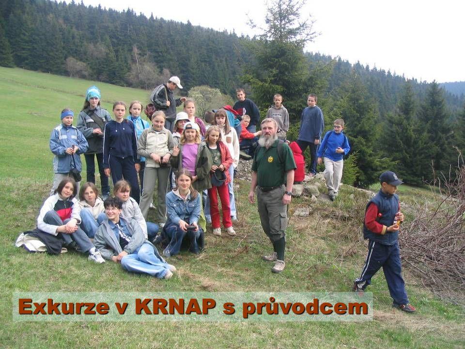 Exkurze v KRNAP s průvodcem