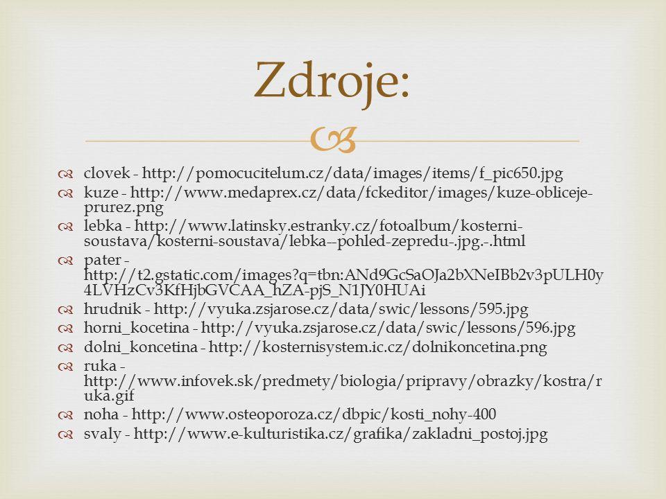   clovek - http://pomocucitelum.cz/data/images/items/f_pic650.jpg  kuze - http://www.medaprex.cz/data/fckeditor/images/kuze-obliceje- prurez.png  lebka - http://www.latinsky.estranky.cz/fotoalbum/kosterni- soustava/kosterni-soustava/lebka--pohled-zepredu-.jpg.-.html  pater - http://t2.gstatic.com/images?q=tbn:ANd9GcSaOJa2bXNeIBb2v3pULH0y 4LVHzCv3KfHjbGVCAA_hZA-pjS_N1JY0HUAi  hrudnik - http://vyuka.zsjarose.cz/data/swic/lessons/595.jpg  horni_kocetina - http://vyuka.zsjarose.cz/data/swic/lessons/596.jpg  dolni_koncetina - http://kosternisystem.ic.cz/dolnikoncetina.png  ruka - http://www.infovek.sk/predmety/biologia/pripravy/obrazky/kostra/r uka.gif  noha - http://www.osteoporoza.cz/dbpic/kosti_nohy-400  svaly - http://www.e-kulturistika.cz/grafika/zakladni_postoj.jpg Zdroje: