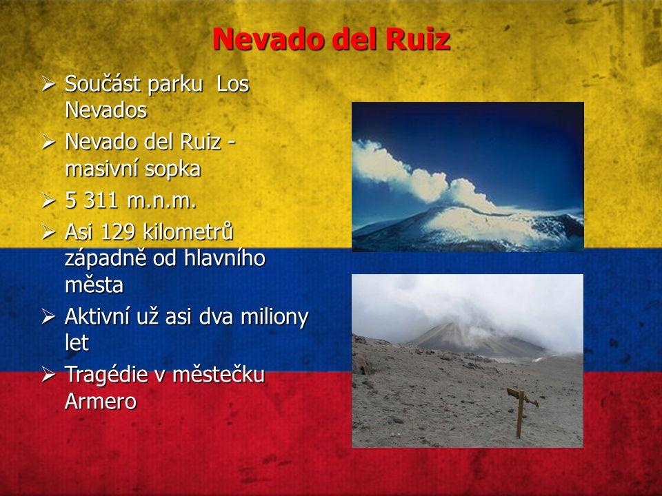 Nevado del Ruiz  Součást parku Los Nevados  Nevado del Ruiz - masivní sopka  5 311 m.n.m.