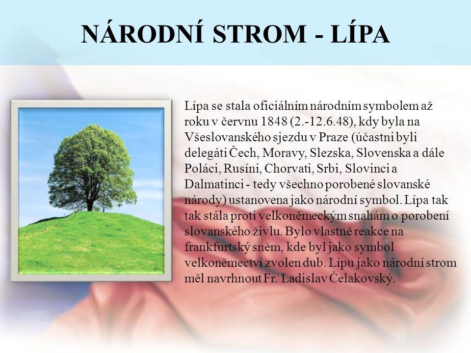NÁRODNÍ STROM - LÍPA Lípa se stala oficiálním národním symbolem až roku v červnu 1848 (2.-12.6.48), kdy byla na Všeslovanského sjezdu v Praze (účastni