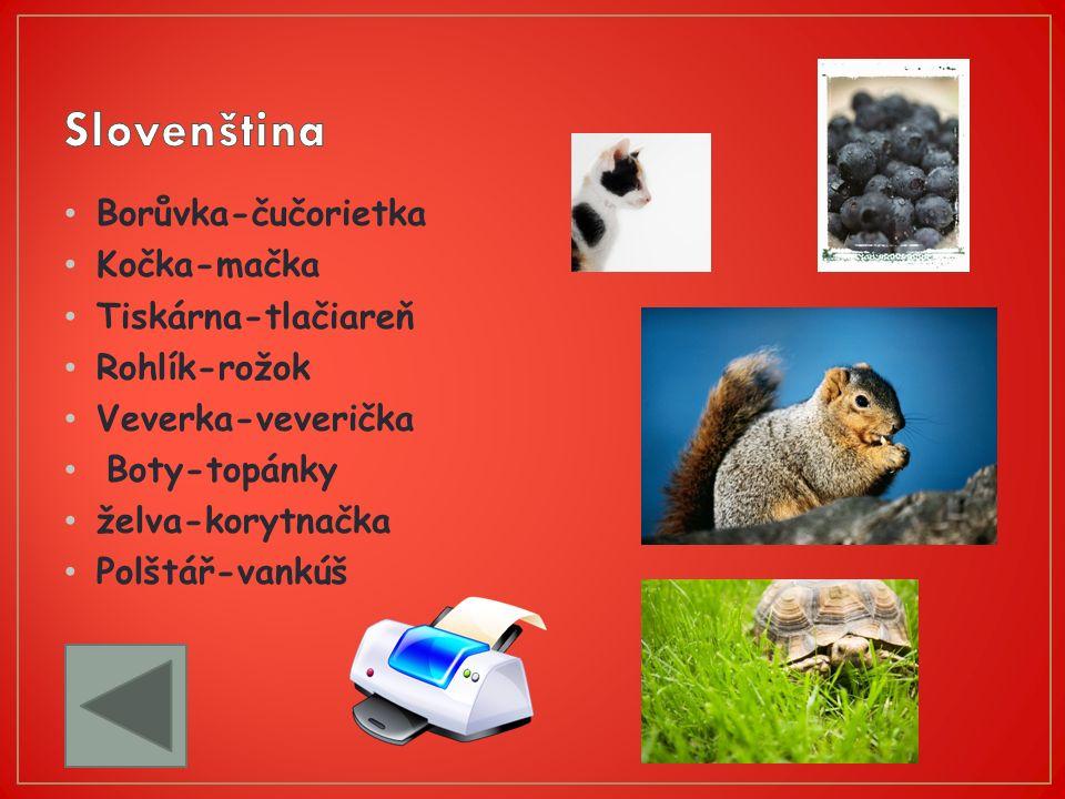 Borůvka-čučorietka Kočka-mačka Tiskárna-tlačiareň Rohlík-rožok Veverka-veverička Boty-topánky želva-korytnačka Polštář-vankúš