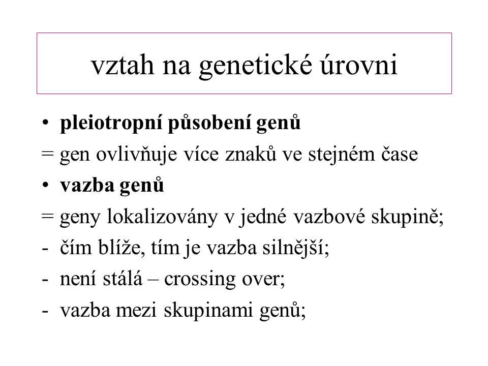vztah na genetické úrovni pleiotropní působení genů = gen ovlivňuje více znaků ve stejném čase vazba genů = geny lokalizovány v jedné vazbové skupině; -čím blíže, tím je vazba silnější; -není stálá – crossing over; -vazba mezi skupinami genů;