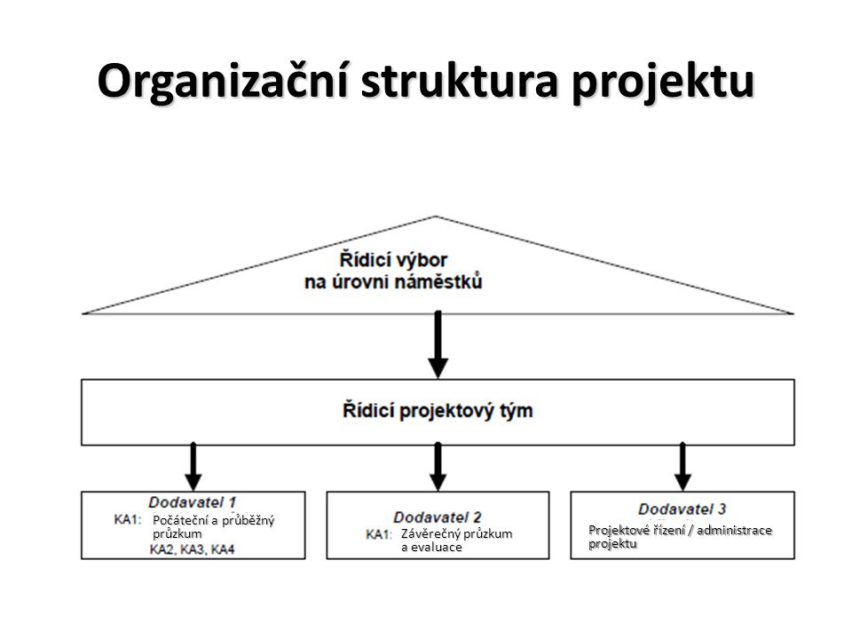 Organizační struktura projektu Počáteční a průběžný průzkum Závěrečný průzkum a evaluace Projektové řízení / administrace projektu
