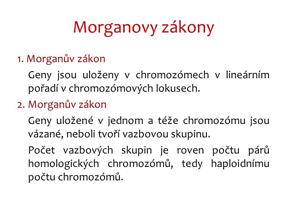 Morganovy zákony 1.